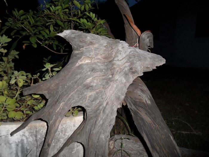 skulptur panter