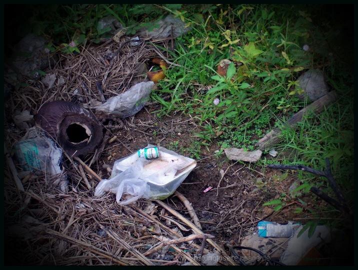 umweltsünden bieflaschen liegen gelassen