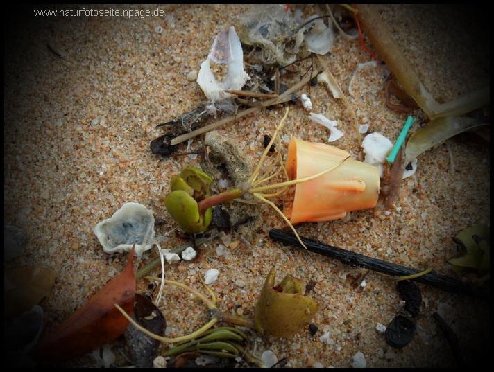 umweltsünden baterien und plastiktüten