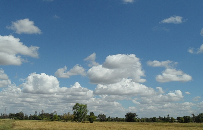 wolken über dem reisfeld
